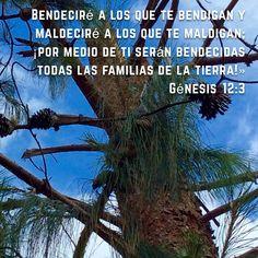 #bendición