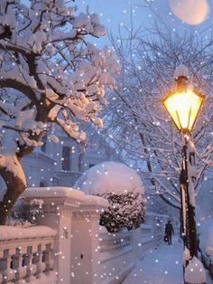 ideas for nature winter wonderland snow scenes I Love Winter, Winter Snow, Winter Christmas, Christmas Time, Christmas Lights, Beautiful Winter Scenes, Winter Magic, Winter Scenery, Snowy Day