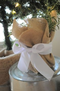 burlap wrapped plants for table