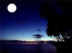 moonlite - Google Search