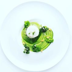 Back in the Fauna Menu: Steamed Skrei | Kale | Horseradish | Potato Risotto by @n.henkel  Tag your best plating pictures with #armyofchefs to get featured.   #comingsoon #opening #restaurantschwarzenstein #nilshenkel #plating #chefs