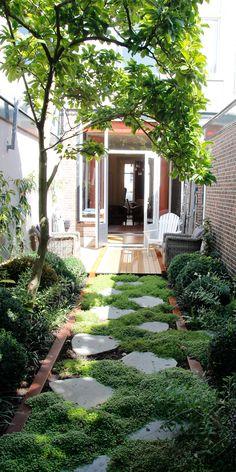 Ideas for the garden. DIY & Crafts