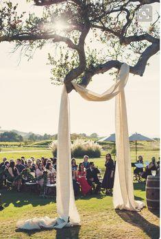 Wedding Decor, Outdoors Decorating, Trees, DIY, Fabric,