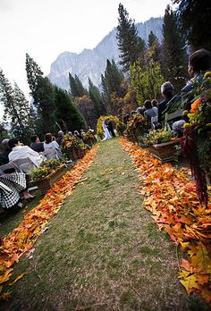 Use Fall Leaves add leaves to hanging cones for guests to toss....really pretty!!