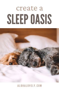 Your bedroom should be your escape, a peaceful sanctuary, your very own relaxing chill zone where you can recharge to your fullest. In this post I am offering 5 simple ways to help transform your bedroom into a sleep oasis. relaxing space - peaceful bedroom - bedroom goals - lux - #sleepoasis #relaxingbedroom #bedroomgoals #cozybedroom R Dogs, Choose Joy, Live Happy, 5 Ways, Your Dog, Stress, Calm, Pretty, Productivity