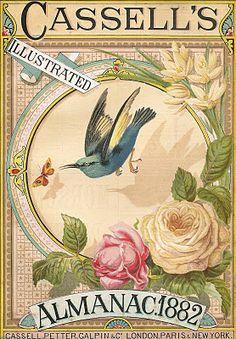 1882 Cassell's lithograph. Blue bird in center.