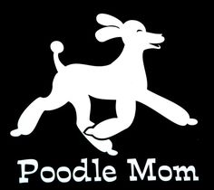 Okay, I used to be a soccer mom, now I'm a standard poodle mom.  Love you, Cooper!