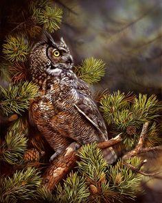 Great-horned owl, great horned owl, Artists for Conservation Owl Photos, Owl Pictures, Owl Wallpaper Iphone, Audubon Birds, Screech Owl, Owl Pet, Great Horned Owl, Beautiful Owl, Bird Drawings
