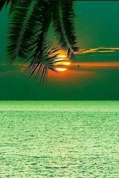 Amazing Sunsets, Amazing Nature, Beautiful Sunrise, Beautiful Beaches, Landscape Photography, Nature Photography, Landscape Pics, Photography Shop, Dslr Photography