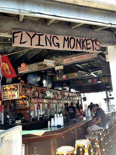 Flying Monkeys, Key West Key West Florida, Florida Usa, Florida Vacation, Florida Travel, Florida Keys, Vacation Spots, Florida Trips, Fl Keys, Places To Travel