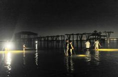 Jubilee! Crabs, flounder, shrimp come ashore near Fly Creek in Fairhope (photo gallery) | al.com