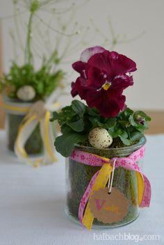 halbachblog I Ostern I Tischdeko bunt I Pflanzen, Bänder, Etikett