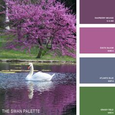 Not sure what color to use to paint? Spark your creativity with these palettes influenced by Mother Nature. See more @BuzzFeed!