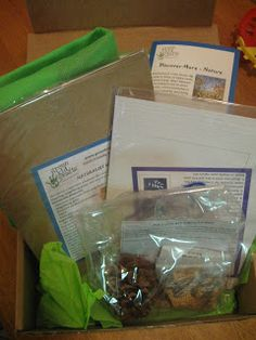 Review of our Nature Discovery Box from An Ordinary Housewife