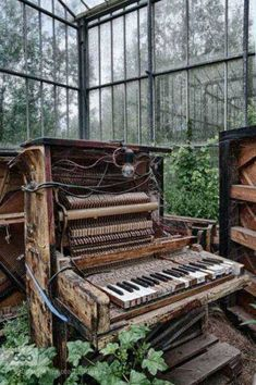 music old nature building Windows piano abandoned HDR decay indoor urbex conservatory glass house Abandoned Buildings, Abandoned Mansions, Old Buildings, Abandoned Places, Abandoned Cars, Abandoned Castles, Derelict Places, Abandoned Hospital, Mansion Homes