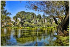 Jardim Botanico, Porto Alegre