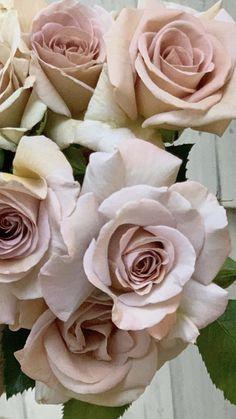 Fall Centerpiece Ideas | Wholesale Flowers
