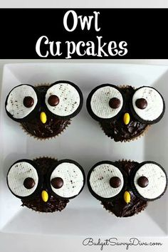Cute owl cup cakes !! Easy too ! Oreo and MM. Cake walk.