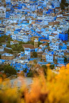 Top view of the blue pearl of Morocco. If there's a place that truly epitomizes the word magical, it's Chefchaouen, in the northwest of Morocco. Places To Travel, Places To See, Travel Destinations, Chefchaouen Morocco, Tanger Morocco, Mekka, Morocco Travel, Travel Aesthetic, Casablanca