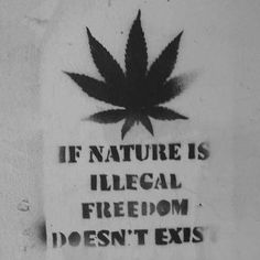 420insidevibes: Marijuana quote