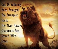 #lion #pictures #quotes