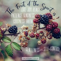 """But the fruit of the Spirit is love, joy, peace, patience, kindness, goodness, faithfulness, gentleness, self-control; against such things there is no law."" ‭‭Galatians‬ ‭5:22-23‬ ‭ESV‬‬"
