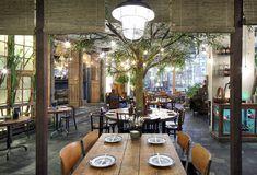 Restaurant Little V Rotterdam_MASA architects (Hiroki MAtsuura + René SAngers)_© Filip Dujardin-01