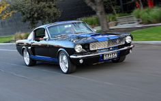1965 Ford Mustang Fastback - Spicehecker 501 Base Black with Rally Blue