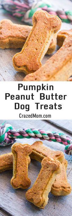 Pumpkin Peanut Butter Dog Treats - Wheat-Free