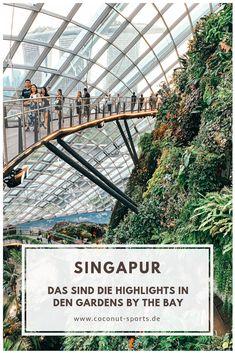 Die Gardens by the Bay zählen zu den absoluten Highlights in Singapur. Hier erfahrt ihr alles rund um die schönsten Sehenswürdigkeiten und Eintrittspreise.