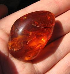 Natural Baltic amber 14 gr Red Pendant Amulet Charm Large Cabochon 琥珀 #HandMade