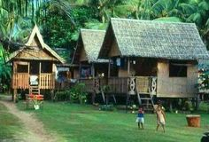 Fact or Frequency of Something Happening: nipa huts