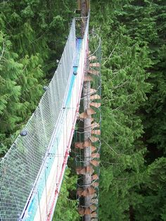 The Cedar Creek Treehouse in Ashford, Washington