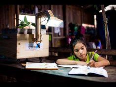 Las Plantalámparas, una idea cojonuda para generar luz gratuitamente | Tiempo de Publicidad | Blog de Publicidad y Creatividad
