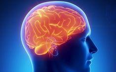 Jag blev väldigt inspirerad av ett TED Talk: Sandra Aamodt: Why dieting doesn't usually work! Mindful Eating!Lyssna/titta verkligen på det här klippet med Sandra Aamodt för det är rakt igenom intressant och bara 12 min. Hon pratar om att hjärnanjobbar på att vi ska öka i vikt mer än minska. …