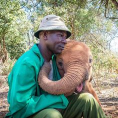 A REASON TO SMILE : A lot of hard work and loving care is behind the orphaned elephants happy faces at DSWT. Read what makes them smile. Adopt An Elephant, Elephant Love, Elephant Art, African Elephant, Elephant Gifts, Baby Animals, Cute Animals, David Sheldrick Wildlife Trust, Elephant Images