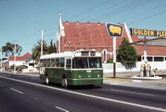 Old MTT bus on Stirling Highway in Nedlands. And a Golden Fleece Petrol Station. Road Transport, Public Transport, Bus Stop, Stirling, Auckland, Western Australia, Back In The Day, Perth, Buses