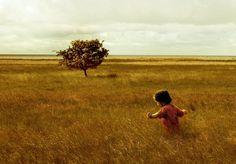 Imagen de http://orig03.deviantart.net/8185/f/2010/076/2/d/andrew_wyeth_inspired_by_donhosho.jpg.