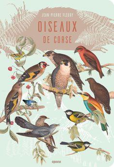Oiseaux de Corse La Corse recèle une grande variété de milieux et se trouve sur la route migratoire de nombreuses espèces. Elle est de ce fait d'une grande richesse ornithologique : oiseaux des plaines ou des cimes, oiseaux de mer, d'étang ou de rivière, ils habitent la Corse ou lui rendent visite au rythme des saisons.  Souvent méconnus, ces oiseaux sont une richesse à découvrir, à connaître, à aimer et à protéger. Art Roman, Rooster, Animals, Sparrows, Eagle, Wealth, Seasons, Animales, Animaux