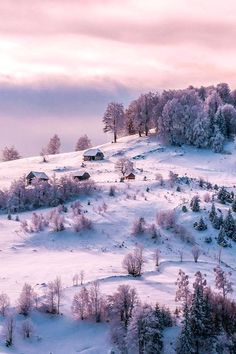 Winter in the Russian countryside.: