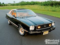 1977 mustang - Google Search