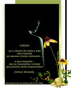 CINZAS