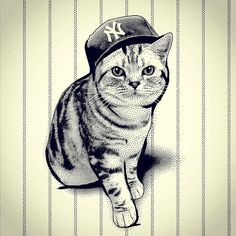 Guess who?  #catdaddy @jimiyodotcom playing around with a new style of rendering pet portraits.  #goyanks #yankees #nyc  #exoticshorthair #cat #cute #flatface #kitten #meow #pet #mreggs #catlover #exoticsofinstagram #smushface #weeklyfluff @yanksgal23