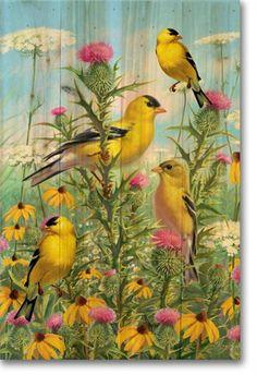 Bird Wood Wall Art Golden Glories