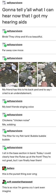 Post with 6593 votes and 160779 views. Tagged with awesome, inspiring, wholesome, 20 wholesome things; Here are 20 wholesome things, you deserve them (Day Cool Tumblr, Tumblr Stuff, My Tumblr, Tumblr Funny, Funny Memes, Funny Quotes, Hilarious, Tumblr Posts, I Smile