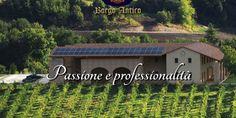 Fantastiche Dolomiti: Azienda Agricola Borgo Antico