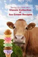 Peanut Butter Ice Cream Recipe: The Frozen Treat for Peanut Butter Lovers