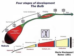 Bulb graph - four stages of development
