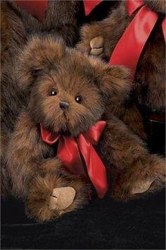 Teddy Bear Love ♥