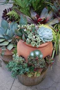 Use strawberry planter for succulents